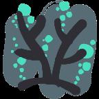 Icono Coral